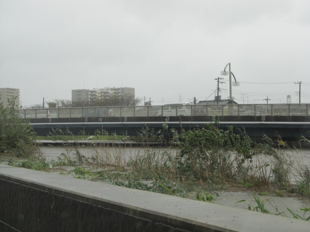 2013年10月16日 台風26号 印旛沼